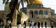 74 مستوطنا يقتحمون الأقصى بحماية شرطة الاحتلال
