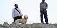 مستوطنون بحماية جيش الاحتلال يمنعون المزارعين من قطف الزيتون شمال شرق رام الله