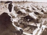 الإحصاء: تضاعف الفلسطينيون 9 مرات بعد 72 عاما على النكبة
