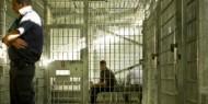 3 أسرى من مخيم جنين يدخلون عامهم الـ14 في سجون الاحتلال