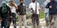 مستوطنون يهاجمون مواطنين وعمال بناء في تل ارميدة بالخليل