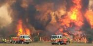 ارتفاع عدد ضحايا الحرائق في الجزائر إلى 42 بينهم 25 عسكريا